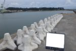 串木野漁港水産物供給基盤(特定)整備工事(R2-1工区)