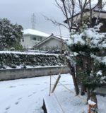 鹿児島で降雪!